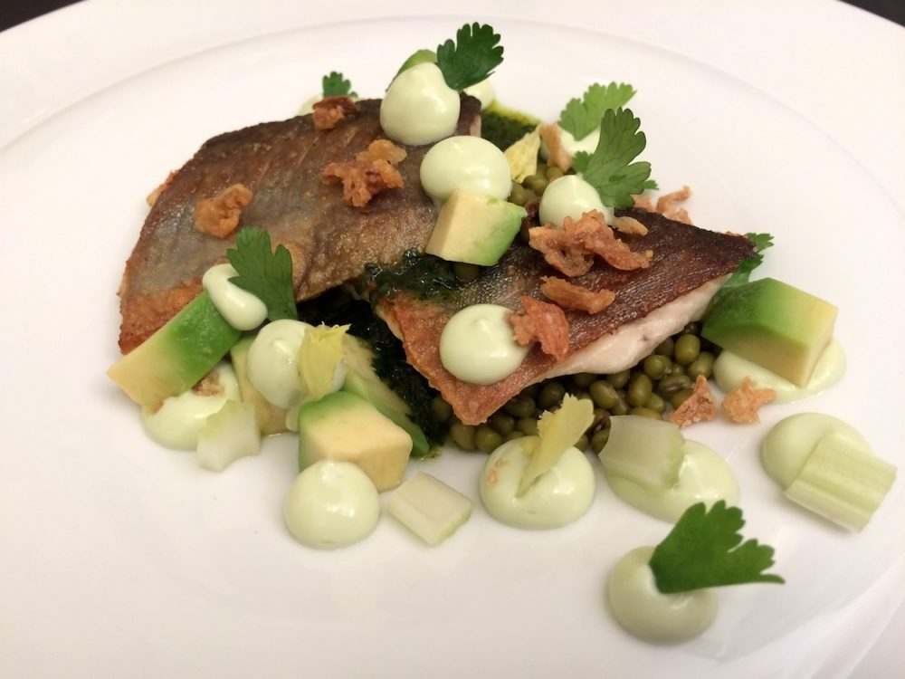 Brook trout, avocado yoghurt and mung beans