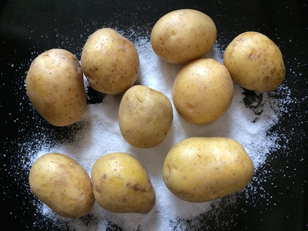 Gnocchi with truffle cream, pecorino cheese and fresh black truffle