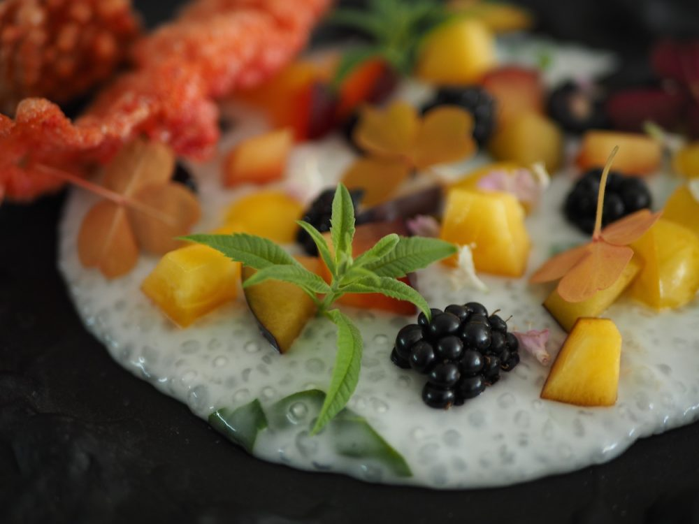 Coconut and tapioca pudding, fruit and lemon verbena